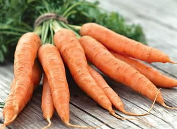 Прекрасная морковка