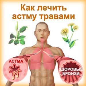 астму травами