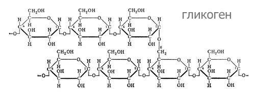 Химическая формула гликогена