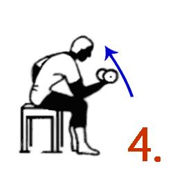 Упражнение на развитие бицепса