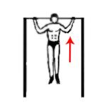 Упражнение для широчайших мышц
