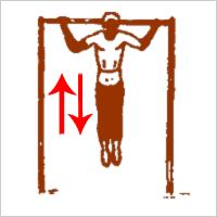 Тренировка широчайших мышц