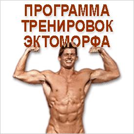 Упражнения для эктоморфного типа телослжения
