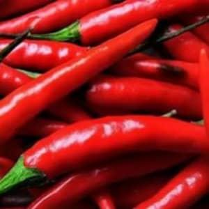 Красный стручковый перец