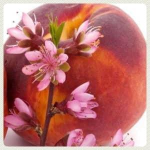 Персик обыкновенный применение